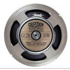 CELESTION T1234BWD Μεγάφωνο 12